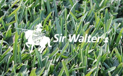 Sir%20Walter%20DNA%20Certified.png